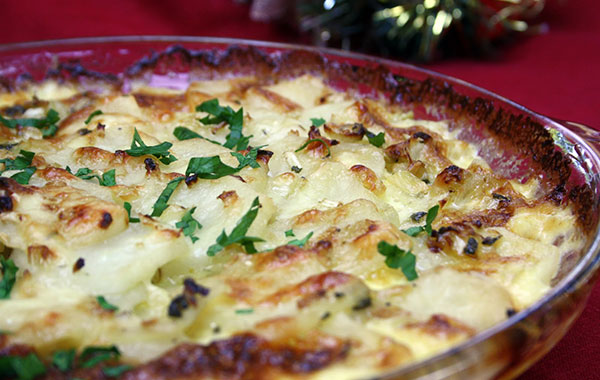 fennel gratin recipe
